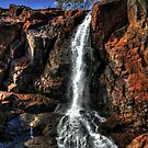 Nigretta falls by Steve Chapple