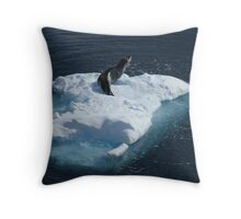 Seal, Lemaire Channel Throw Pillow