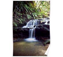 Leura Cascade Blue Mountains NSW Poster