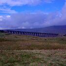 A View of Ribblehead Viaduct by Trevor Kersley