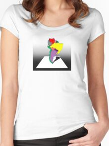 Anamorphic South America Women's Fitted Scoop T-Shirt