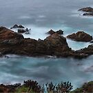Moss Cove California by Jenn Ramirez