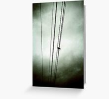 On A Wire Greeting Card