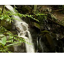 Guess what?  More Laurel Falls!! Photographic Print