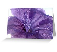 Purple Flower with Dew Drops Greeting Card