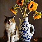 Feline Finesse by Jean Hildebrant
