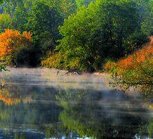 Misty River by Ron Waldrop
