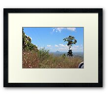 glasshouse mts australia Framed Print