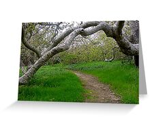 Natural Archway Greeting Card