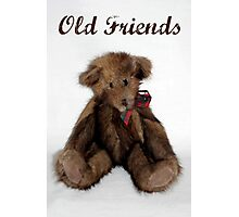 Old Friends Photographic Print