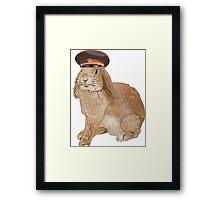 Communist Bunny Framed Print