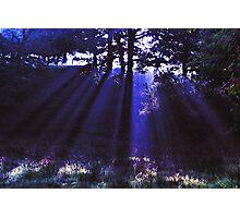 Blue Ray Photographic Print