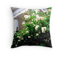 Noisette Roses, First Baptist Church Throw Pillow
