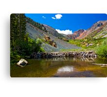 Beaver Dam, Lundy Canyon Canvas Print
