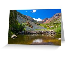 Beaver Dam, Lundy Canyon Greeting Card