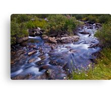 Rock Creek Near Mosquito Flats Canvas Print