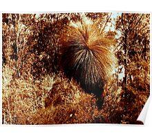 """Bronze Bushland"" Poster"