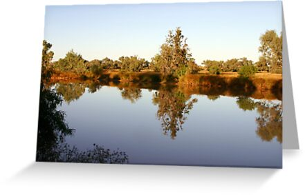 Nature's Mirror ~ Diamantina Lakes National Park by Robert Elliott