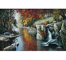 Red Cranes Autumn River nature birds autumn fall waterfowl oil  Photographic Print