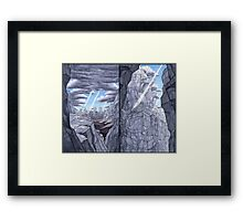 Dörfler 11A Framed Print