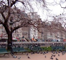 Park bench by Patrick Czaplewski