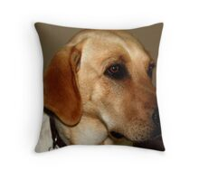 Wise Lab Throw Pillow