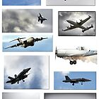 The Airshow  by Lisa  Kenny