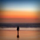 beyond the sea by evap
