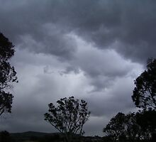 September Storm - Gungahlin (Australian Capital Territory) by eucumbene