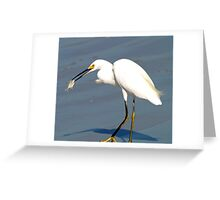 White Egret with Dinner Greeting Card
