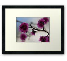 Silken Framed Print