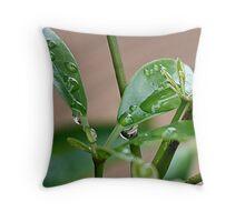 Wet 'n' Rainy Throw Pillow