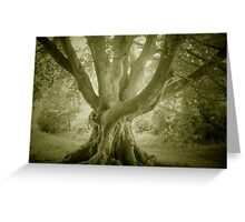 QUEEN OF THE WOODS Greeting Card