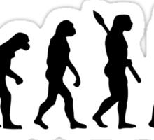 Evolution Hairdresser Sticker