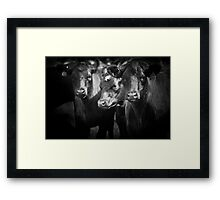 tough crowd Framed Print