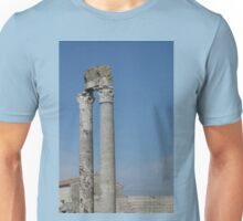 Columns of Roman Theatre, Arles Unisex T-Shirt