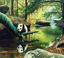 Panda Stream  by Ze Zhao