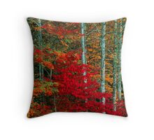 TREES,AUTUMN Throw Pillow
