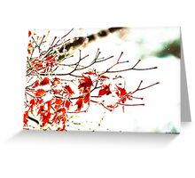 Snowy Maple Abstract Greeting Card
