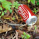 Discarded Coca~Cola Can II by JenniferW