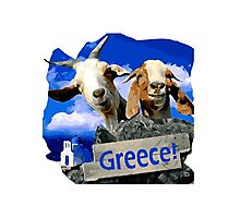 Happy goats in Greece Photographic Print