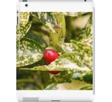 Red Berry iPad Case/Skin