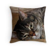 Tolerant Cat Throw Pillow