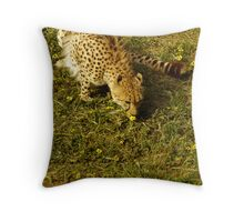 Time to smell the Flowers. Throw Pillow