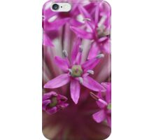 Flower Symmetry iPhone Case/Skin