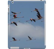 Flying Flamingos iPad Case/Skin