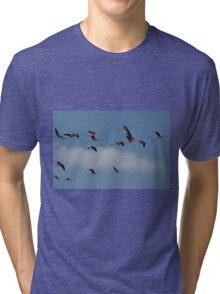 Flying Flamingos Tri-blend T-Shirt