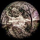 Trout Pond Noyac by Rick Gold