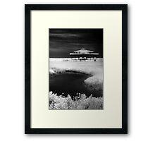 Alone on Stilts Framed Print