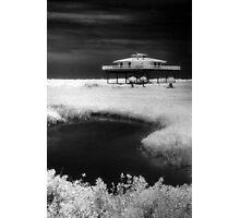 Alone on Stilts Photographic Print